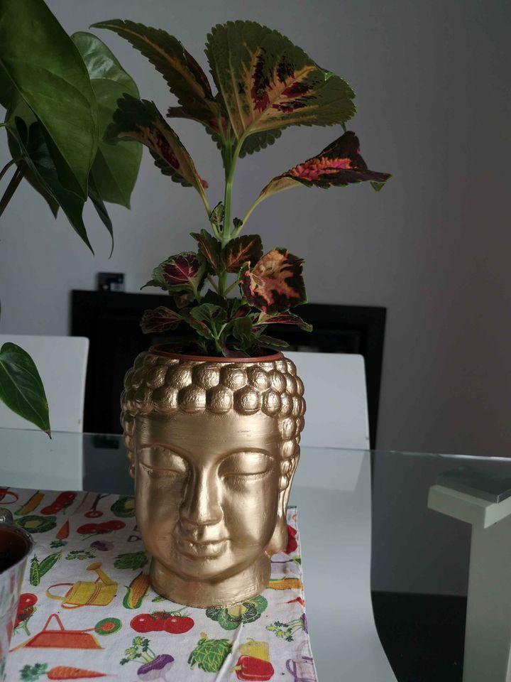 Vaso cabeça Buddha 18,5cm 18€